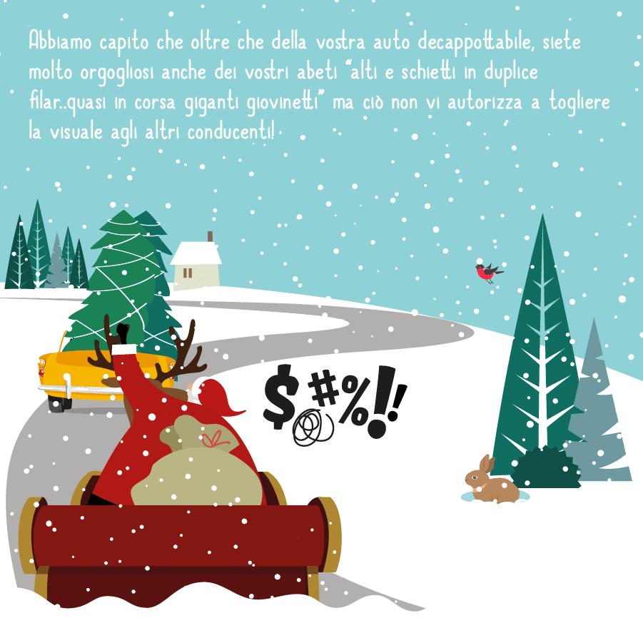 Come trasportare un albero di Natale in auto 2